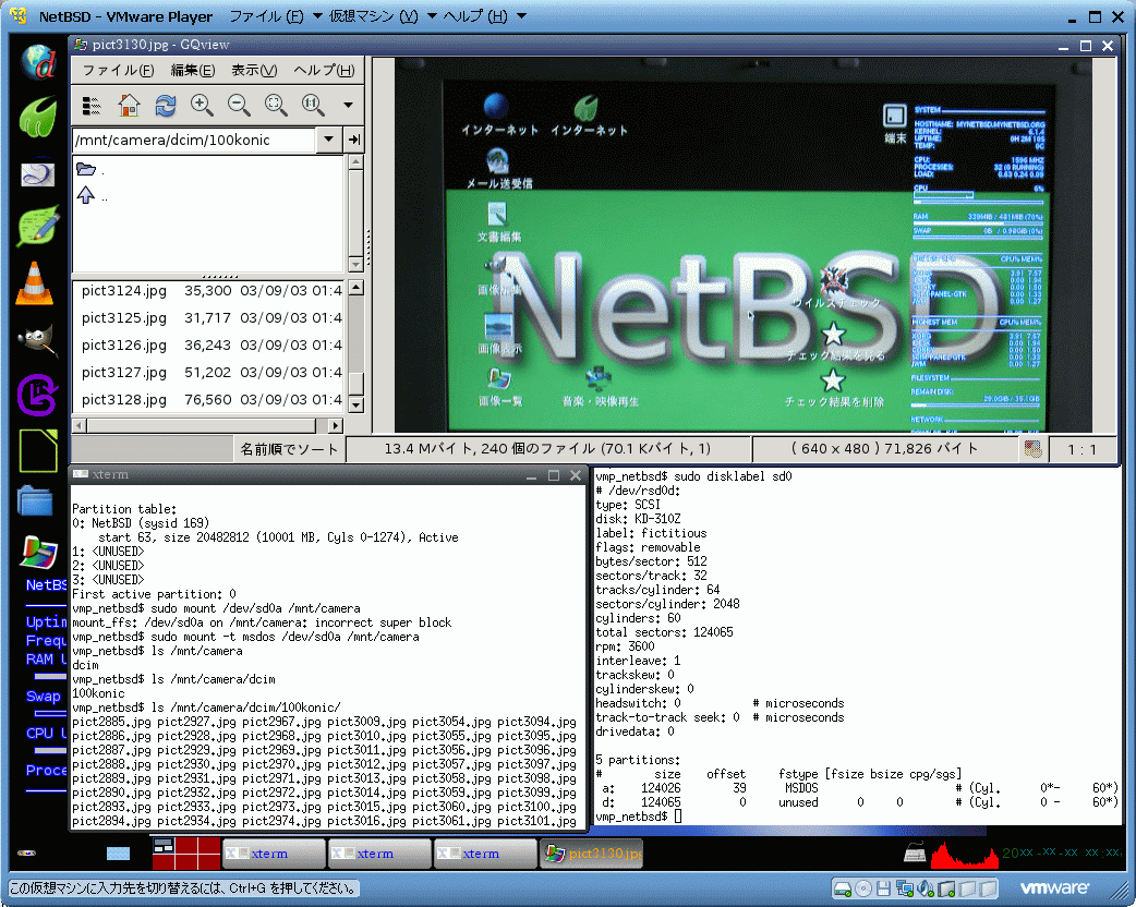 Konica Digital Revio KD-310Z on NetBSD by VMware Player